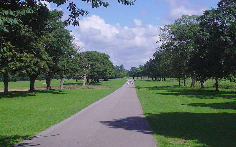 Dog walks in Liverpool - Croxteth country park
