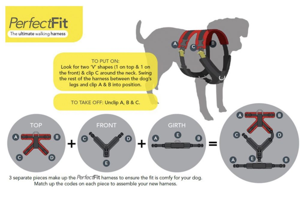 perfect fit dog harness