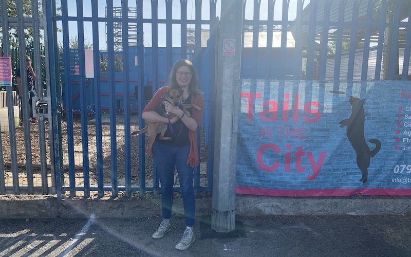 Doggy Daycare Liverpool