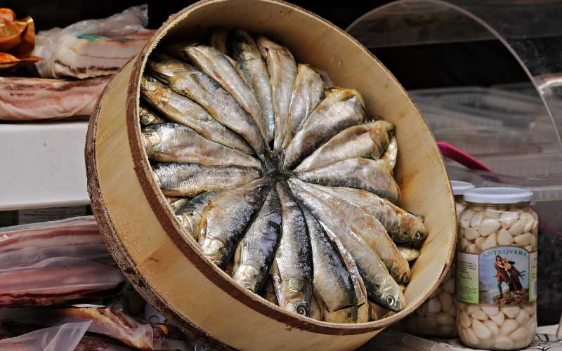 Sardines for Dogs