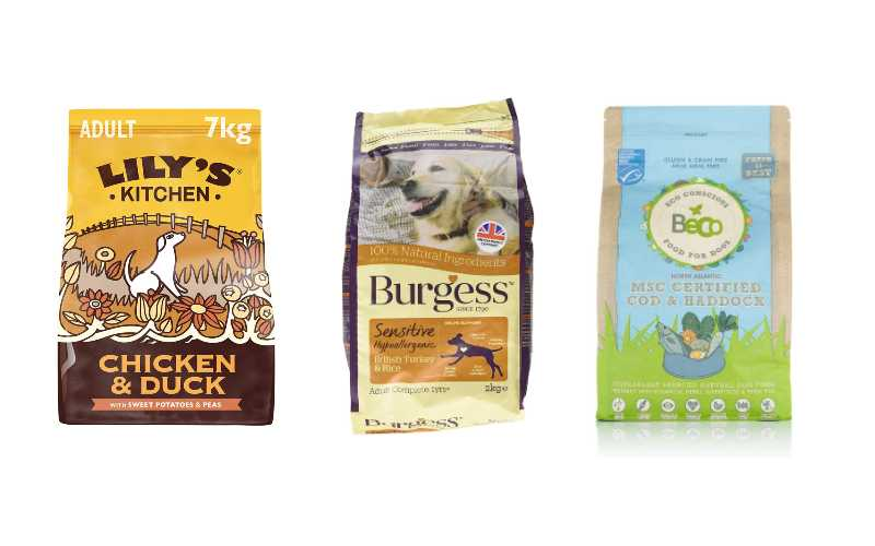 Best Dog Foods for Flatulence