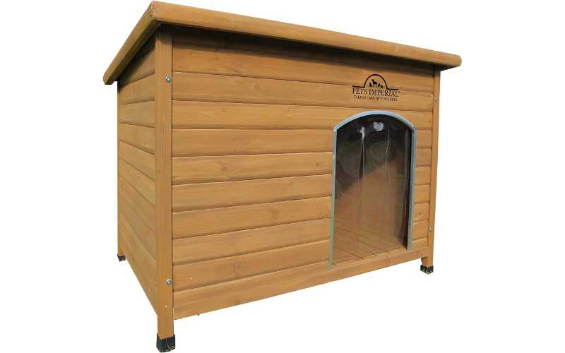 Patterdale Terrier Kennel